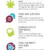 Let's Talk Cannabis Rack Card image